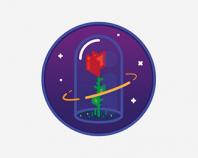 Space_rose